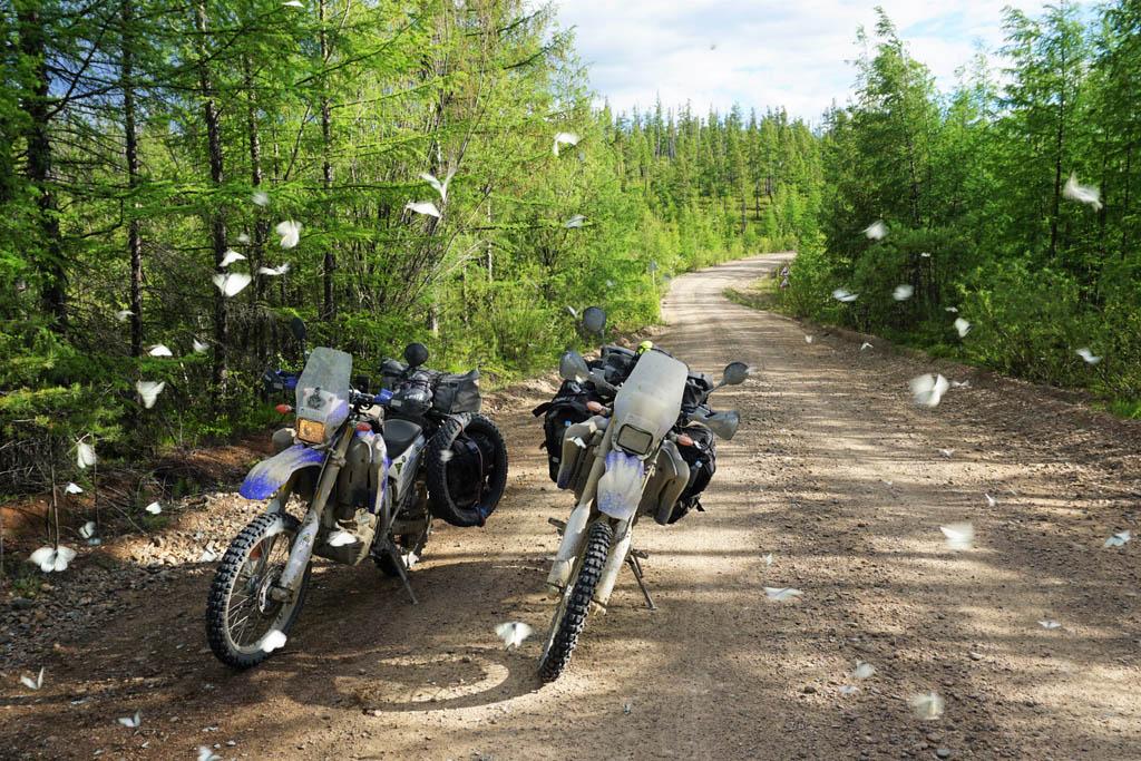 Riding the legendary BAM Road in Siberia DSC08055